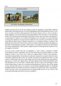 página 31 del informe