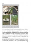 página 32 del informe