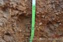 Desarrollo de la raíz profundidad 60-70cm