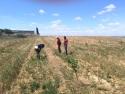 Jornada de colaboración entre proyectos LIFE en las parcelas de Aragón
