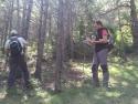 Marcaje de los árboles que se cortaran para aplicar el modelo Ps05