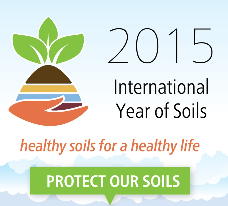 Soils are the foundation of farming life crops for for Soil our life