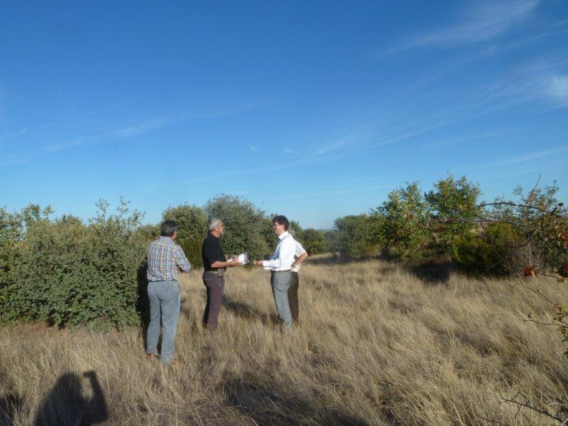 Scoping of ayo de vidriales for carbon project operation co2 for Viveros fuenteamarga