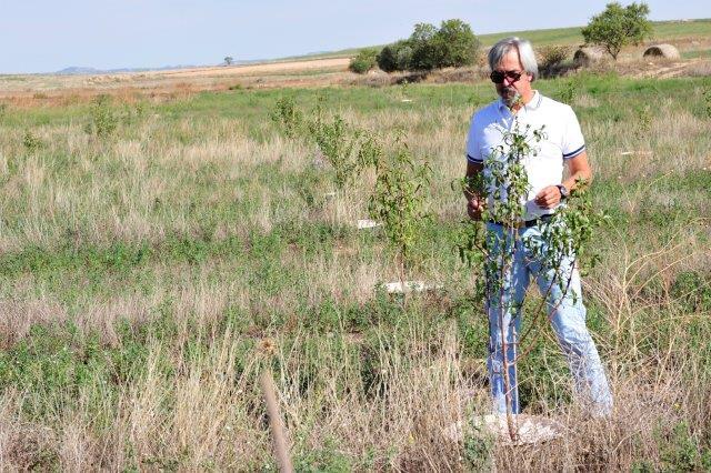 Trabajo de campo en san mateo de g llego operaci n co2 for Viveros fuenteamarga