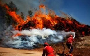 Incendios forestales. Es imprescindible invertir en gestión forestal y desarrollo rural