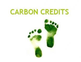 Invitación a expertos en temas de créditos de carbono para revisar políticas y reunión de networking en Barcelona