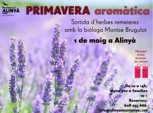 Actividad de divulgación sobre las plantas aromáticas en la Alinyà