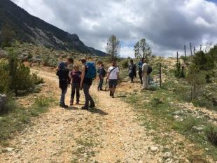 Estudiantes del Máster en European Forestry recorren las plantaciones de la Alinyà