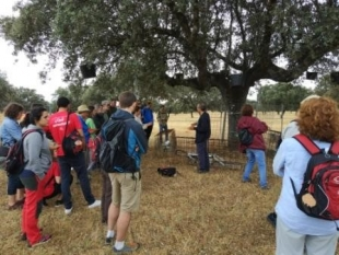 Visita de campo en el Congreso Forestal Español